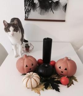 edouard-halloween
