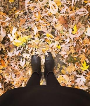feuilles-mortes-lausanne