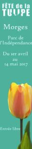 fête de la tulipe morges 2017 chicandswiss blog suisse