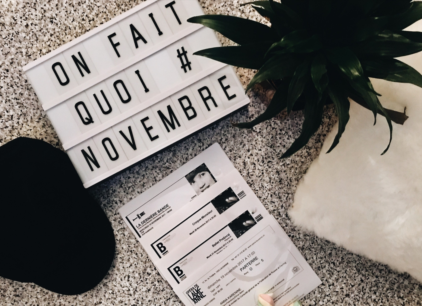 chicandswiss-on-fait-quoi-en-novembre