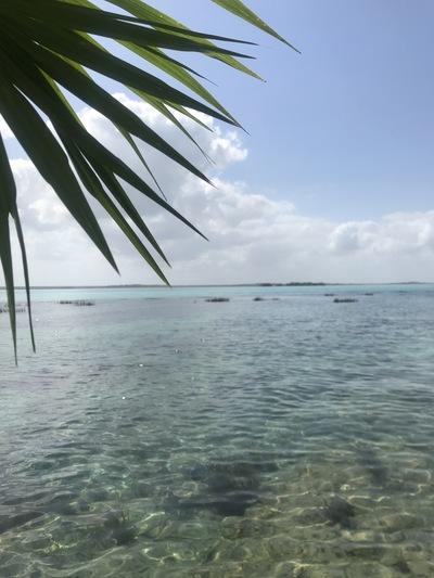 laguna-bacalar-lagoon-chicandswiss9