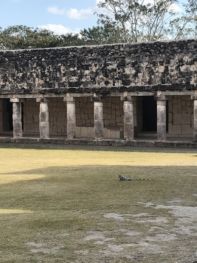 uxmal-pyramide-temple-chicandswiss14
